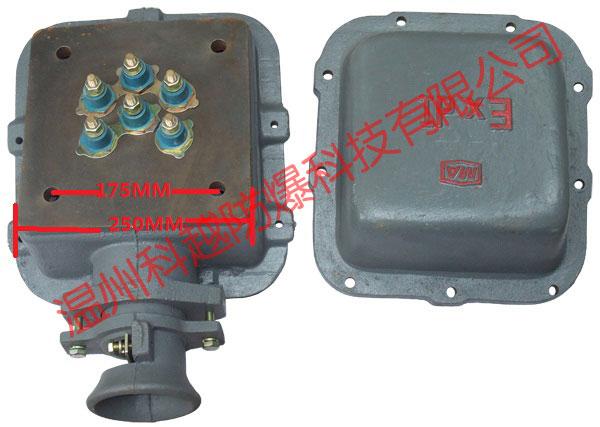 接线柱m12=6个_方形防爆电机接线盒正面背面实物图